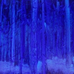 Mäki 50 x 100 cm Oil on canvas. 2009