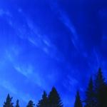Sininen Hetki 130 x 87 cm Oil acrylic and ink on canvas. 2008