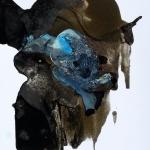 Alex Gough, Wilderness in Paint 78, 29.7 x 42cm, 2018