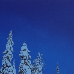 Kuutamo 100 x 50 cm Oil acrylic and ink on canvas. 2007