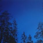 Tammikuu 110 x 70 cm Oil acrylic and ink on canvas. 2008