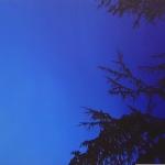 Sininen Unelma 91 x 51 cm Oil acrylic and ink on canvas. 2008