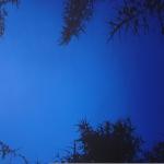 Sinen Syvyys 170 x 130cm Oil, Acrylic & ink on canvas 2006