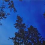 Ilta Tammiossa 90 x 61 cm Oil, acrylic & ink on canvas. 2005